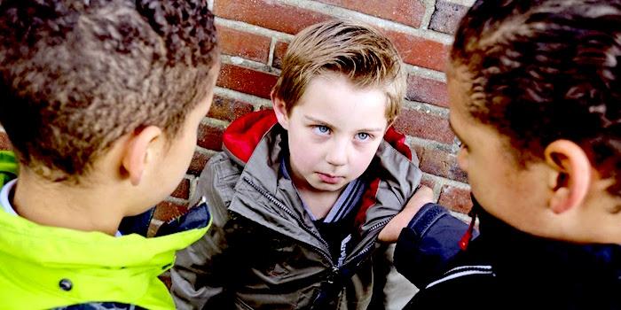 我的孩子是被骚扰: 如何保护它们呢?