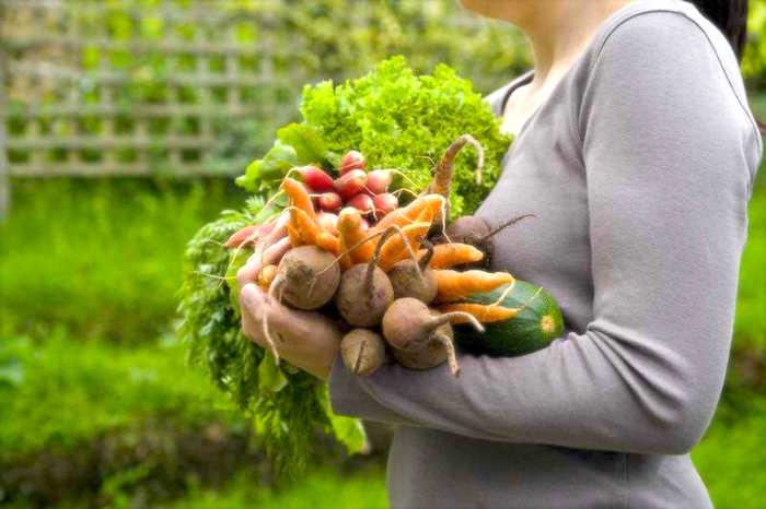 Zaradi nervoze orthorexia: Ko zdravo prehranjevanje postane motnje hranjenja