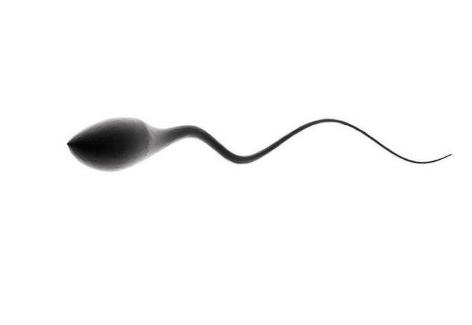你需要知道之前你捐献精子?