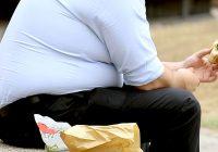 ¿La obesidad epidémica es la responsable del aumento de la desnutrición?