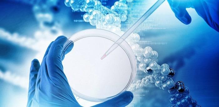 एंडोमेट्रियल कैंसर के लिए जाना जाता आनुवंशिक जोखिम कारकों की संख्या