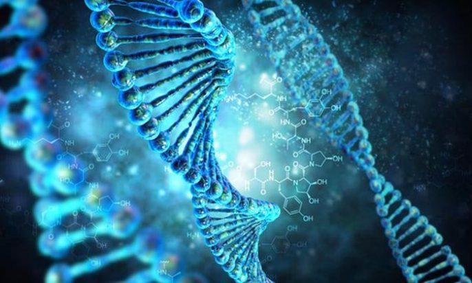 Multitarefa de nossos genes