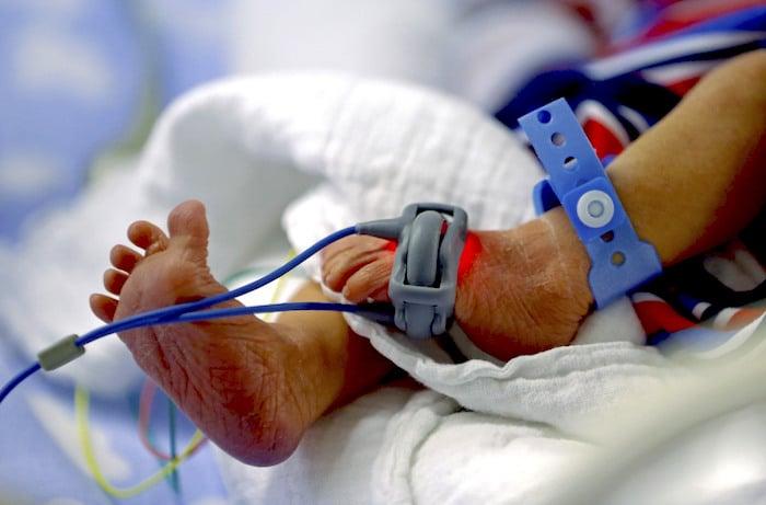 उन अपरिपक्व शिशुओं अन्य लोगों में कम रुचि दिखा रहे हैं