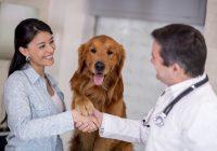 ¿Es su animal doméstico diabético?