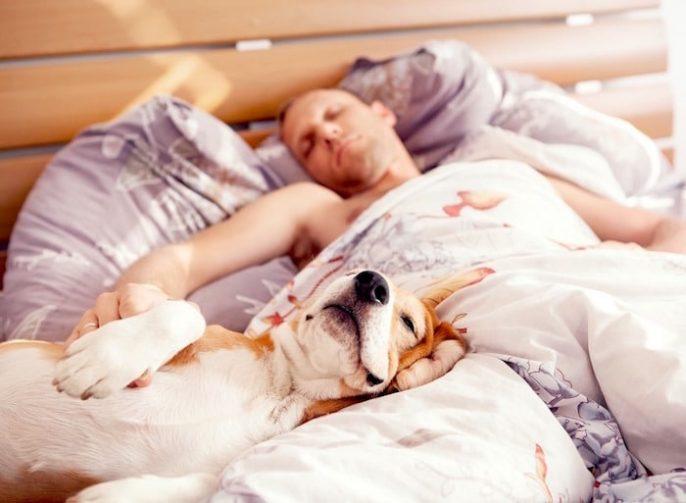 Faire un régime différent vous fera bien dormir
