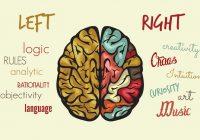 Yoga superbrain: Yoga para o cérebro