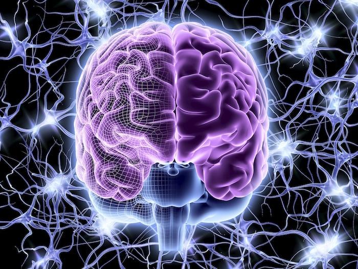 Stres, alzheimerjeva bolezen in bolezni možganov