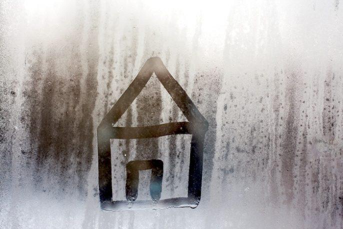 Invierno: ¿el frío, la humedad y el moho hacen de su hogar un peligro para la salud?