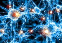 Maladie de Parkinson: options de traitement
