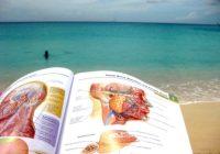 Las 3 mejores escuelas médicas del caribe a considerar