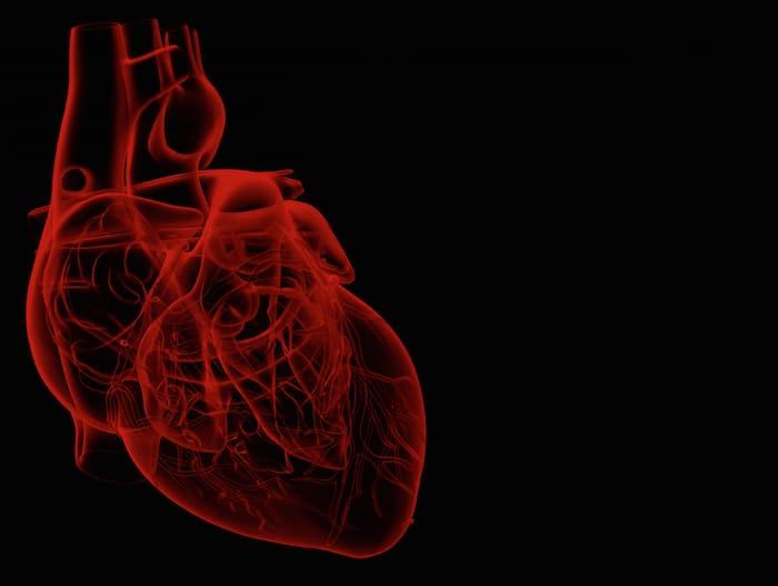 拖延行政当局的肾上腺素心脏病死亡率增加
