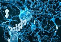La terapia magnética puede aliviar la enfermedad de Alzheimer leve