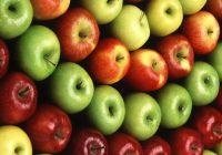 Mögliche gesundheitliche Vorteile von Routine (Flavonoid)