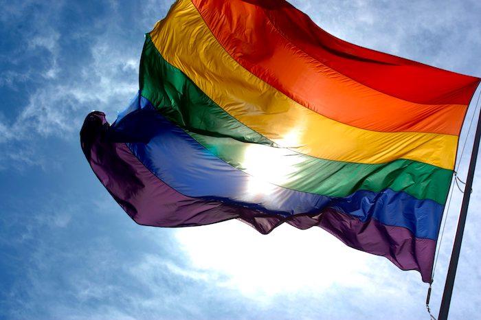 La homosexualidad: ¿naturaleza o educación?
