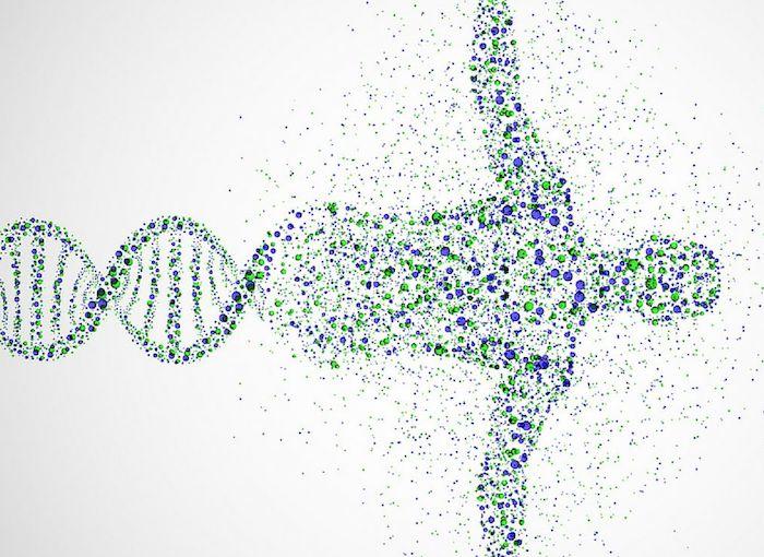 MTHFR y cannabis: cómo un gen mutante puede hacer que la marihuana sea mortal