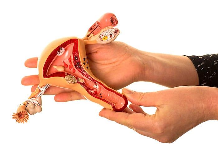 إجراء خزعة بطانة الرحم