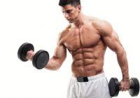 如何安全地锻炼肌肉