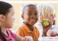 Las frutas y verduras son el secreto del éxito en la escuela para niños