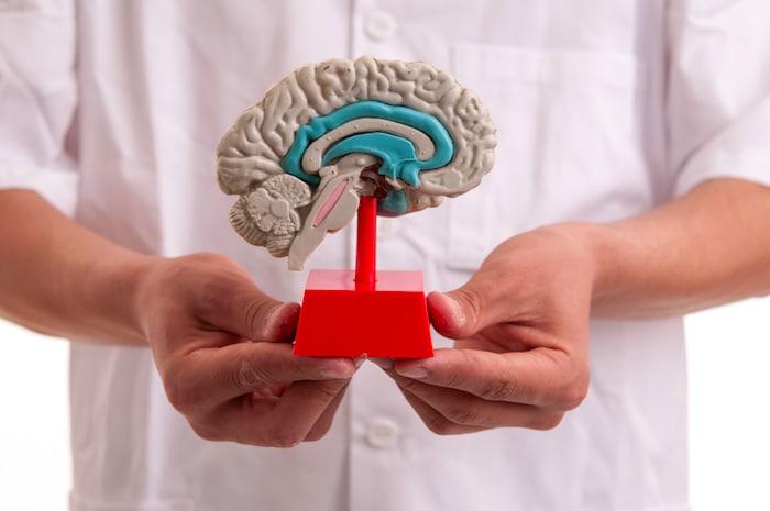 A otoxitina sintética pode tratar o autismo?
