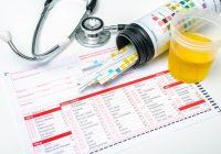 尿液中的蛋白质:原因和风险因素