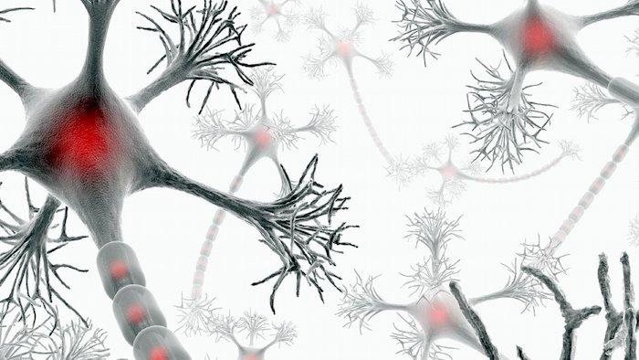Multipla skleroza: vzroki in dejavniki tveganja
