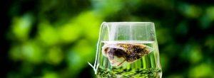 हरी चाय: काफी स्वस्थ, लेकिन कोई इलाज नहीं