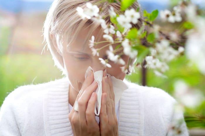 Traitement de l'allergie au pollen