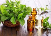 Beneficios para la salud del aceite de menta y té de hierbabuena