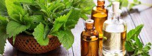 Avantages pour la santé de l'huile de menthe poivrée et le thé à la menthe