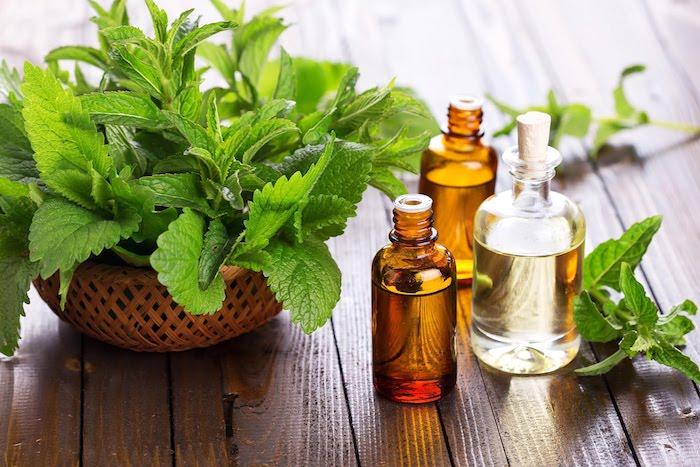 Avantages pour la santé de l'huile de menthe poivrée et du thé à la menthe poivrée