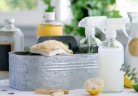 Produtos de limpeza domésticos: são melhores que produtos químicos?