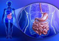 Infecciones intestinales con parásitos de ténia