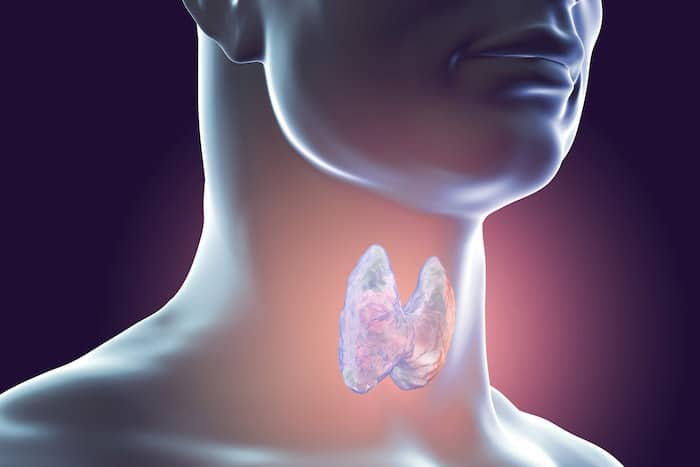 Los suplementos de yodo para el hipotiroidismo: ¿nutrientes o toxinas?