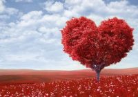 Abendessen für zwei: Romantische Rezepte zum Valentinstag