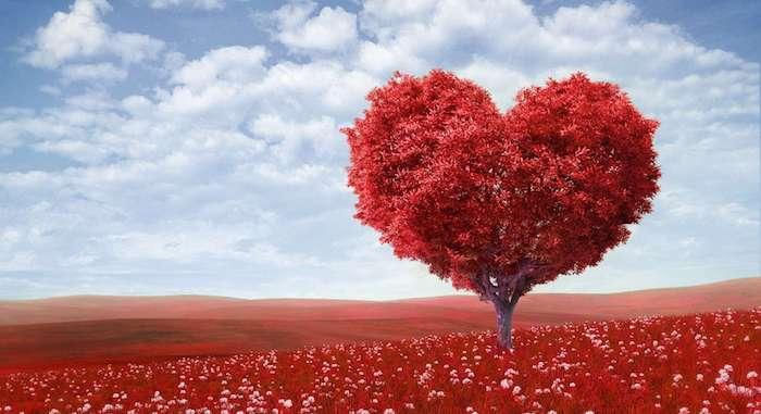 Cena para dos: recetas románticas para el Día de San Valentín