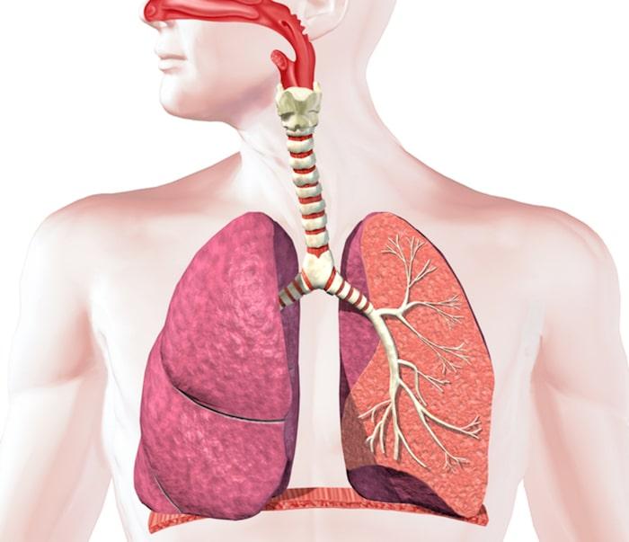 Bronhitis: vzroki, simptomi in zdravljenje