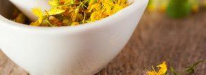 Ali je rastlina šentjanževka za zdravljenje depresije fibromialgiji?
