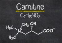 Les meilleurs suppléments pour la fibromyalgie: la L-Carnitine peut-elle soulager vos douleurs musculaires?