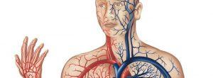 Slaba prekrvavitev: vzroki, znaki in simptomi, in zdravljenje