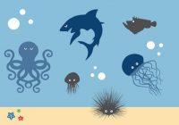 Peligros del mar: tratamientos para las picaduras de erizos de mar y de medusas