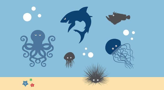 危险的海上: 治疗方法的叮咬的有毒海胆和海蜇
