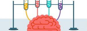 को बढ़ावा देने के सामाजिक कौशल के अन्वेषण के साथ मस्तिष्क