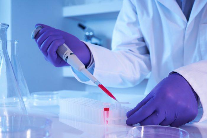 脂肪细胞的强化为白血病提供了新的潜在治疗方法
