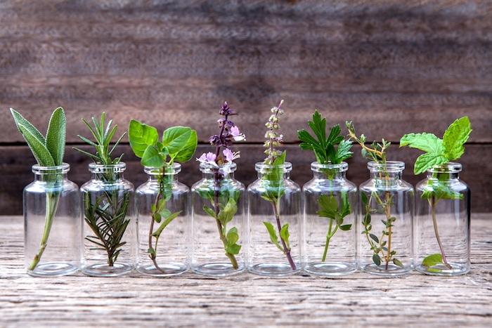 Las diez mejores hierbas para la salud de la próstata
