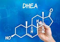 Investigación: Suplementos de DHEA probados para aumentar la libido en las mujeres y ayudar a la disfunción eréctil en los hombres