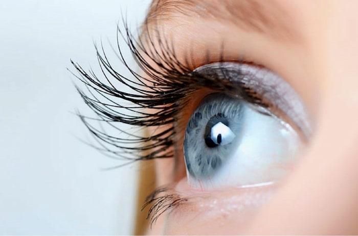最好的眼部保健品