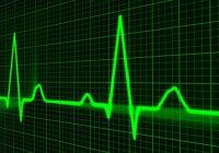 Wie können wir den Herzschlag sehen und wann wissen wir, ob er normal ist oder nicht?