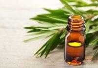 """Tenga cuidado con las """"curaciones"""" que prometen las plantas para el cáncer"""