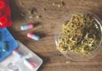 هل يتفاعل الماريجوانا مع زولوفت؟