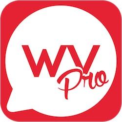 Aplicación Word Vault Pro